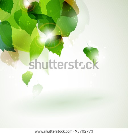 Overlying leaves with sun light breaking trough in the upper left corner of the background. Vector available in my port. - stock photo