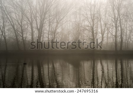 Overview of a landscape with fog - stock photo