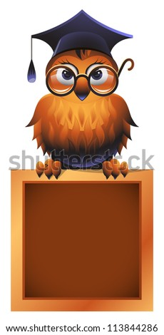 Owl in a square academic cap and in glasses, perching atop a school chalkboard - stock photo