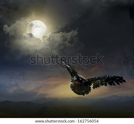 owl in the night sky. against the background of the Moon - stock photo