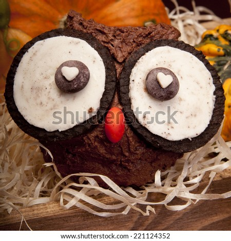 Owl muffins for Halloween - stock photo