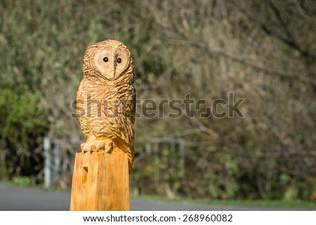 Owl Sculpture / The making of an owl sculpture by a chainsaw sculptor here freshly completed - stock photo