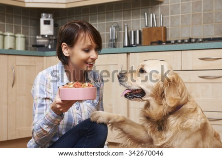 Owner Giving Golden Retriever Meal Of Dog Biscuits In Bowl - stock photo