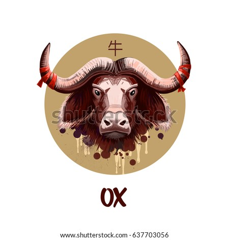 Year Of The Ox Stock Images, Royalty-Free Images & Vectors ...
