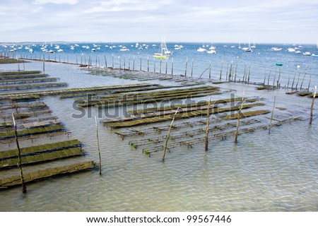 oyster farming, Pier of Cap-ferret in France - stock photo