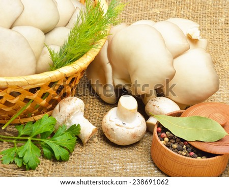 Oyster mushrooms, champignon mushrooms, green dill and pepper on the sacking backgroung - stock photo