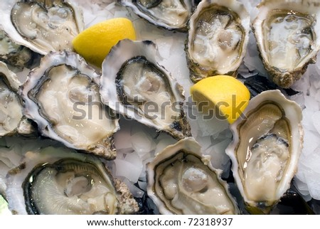 how to open oysters in the oven