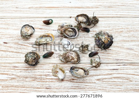 Oyster seafood fresh mussel asia appetizer wood background - stock photo