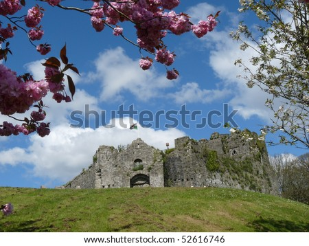 Oystermouth castle in Spring