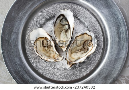 Oysters on a silver dish  - stock photo