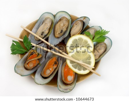 oysters on the white - stock photo