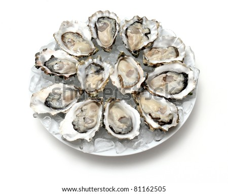 Oysters the Dozen - stock photo