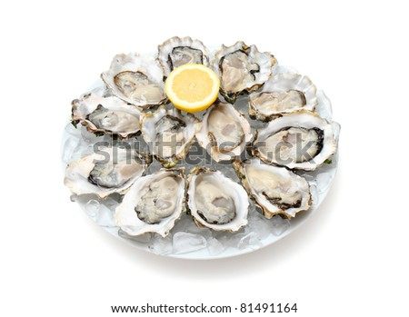 Oysters the Dozen on ice and with a piece of lemon on the side. - stock photo