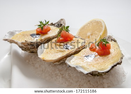 oysters with sauce and lemon on plate - stock photo