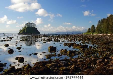 Ozette Coast, Washington State - stock photo