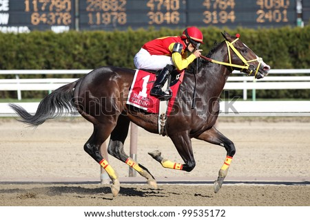 OZONE PARK, NY - APRIL 7: Trinniberg with Willie martinez aboard wins the 2012 Bay Shore Grade III Stakes at Aqueduct on April 7, 2012 in Ozone Park, New York. - stock photo