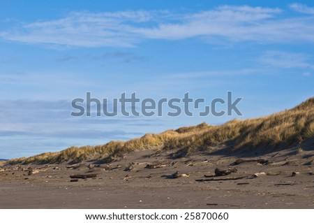 Pacific coast sand dune - stock photo