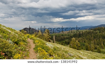 Pacific Crest Trail in Northern California, USA - stock photo