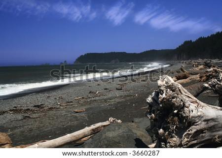 Pacific northwest coastline - stock photo