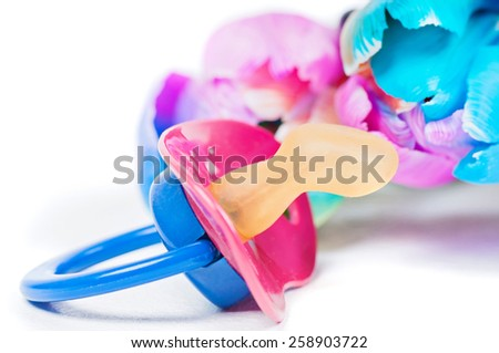 Pacifier with multicolored tulips - stock photo