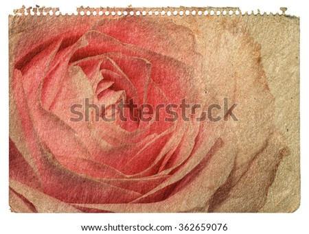 Page from a notebook with a rose - stock photo