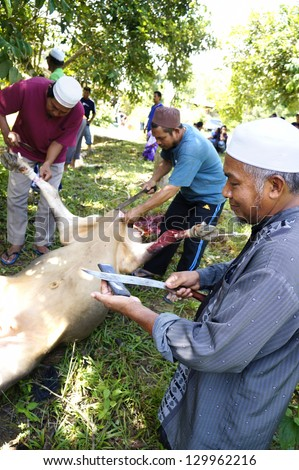 PAHANG, MALAYSIA - OCTOBER 26: Abdul Malik sharpen knife in slaughtering a cow during Eid Al-Adha Al Mubarak, the Feast of Sacrifice on October 26, 2012 in Pahang, Malaysia. - stock photo