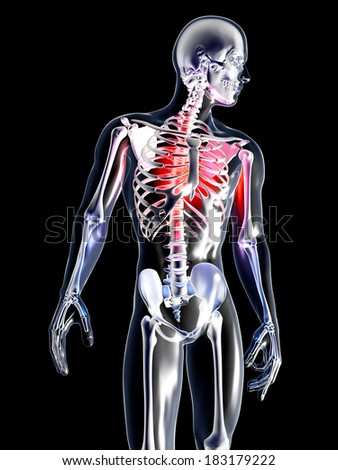Pain in the Chest or the heart. 3D rendered illustration. Isolated on black. - stock photo