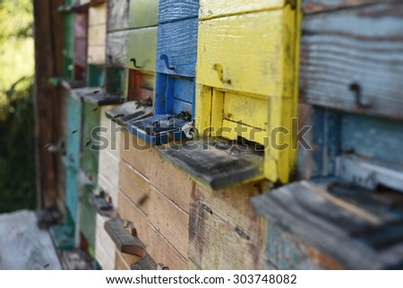 Painted colorful wooden beehive, isolated. Close-up. Honey. Bees. Traditional. Apiary. Beekeeping. Apiology. Farming. Carniolan honey bee. Apis melifera carnica. Slovenia.  - stock photo