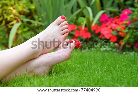 Painted toes match flowers in the garden.  In this case annual impatiens flowers. - stock photo