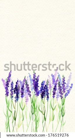 Painted watercolor card with lavender flowers  - stock photo