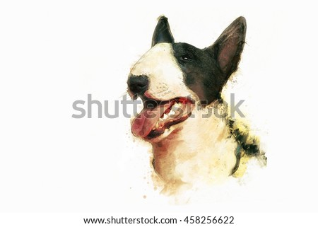 Painting of Bull Terrier on white