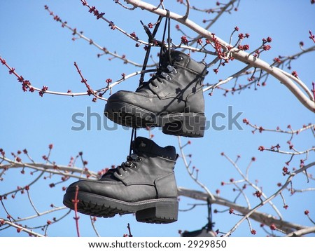 pair of black work boots hanging in a tree - stock photo