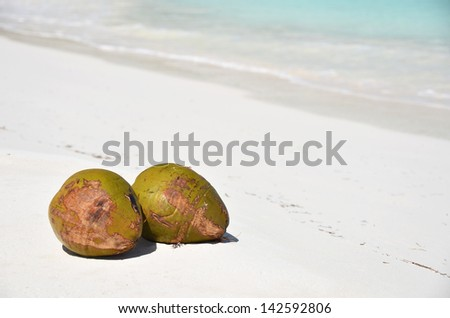 Pair of cocunuts on the beach. Bahamas - stock photo