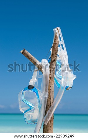 Pair of diving masks hanging on a branch at the beach - stock photo