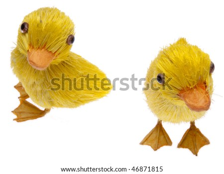 Pair of fun springtime Easter ducks isolated on white with a clipping path.