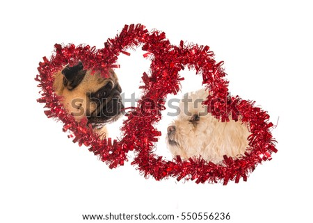 Pair of paper hearts with pictures of two dogs on love with room for text