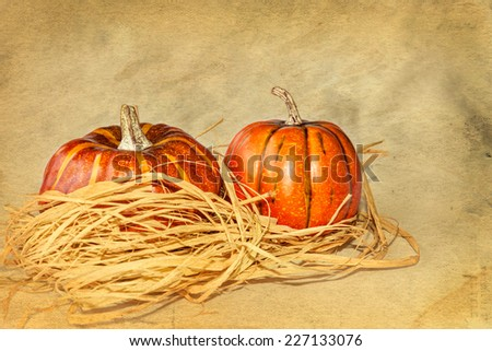 Pair of pumpkins, surrounded by raffia straw, against a grunge paper background (room for text)