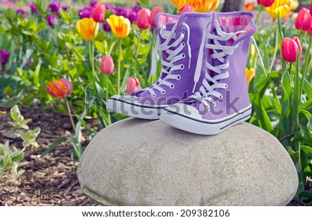 pair of purple high top sneakers on a rock on a spring tulip garden - stock photo