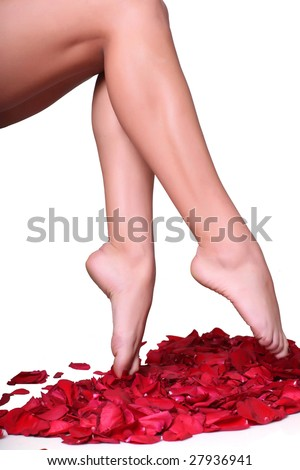 Pair of well-groomed feet against from petals of red roses, isolated on a white background, please see some of my other parts of a body images: - stock photo