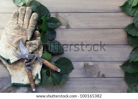pair of worn out glover, pruning scissor and some green leaves on wooden table - stock photo