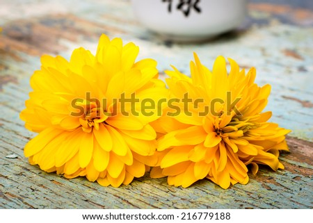 Pair yellow flowers golden ball stock photo edit now 216779188 pair of yellow flowers golden ball mightylinksfo