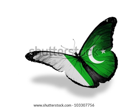Pakistani flag butterfly flying, isolated on white background - stock photo