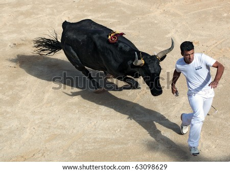 PALAVAS, FRANCE - SEPTEMBER 26:  Bull chases unidentified competitor during bull racing game. Traditional sport in Camargue region of France - cash to he who removes strings from bull's horns in Palavas, France on Sept 26, 2010. - stock photo