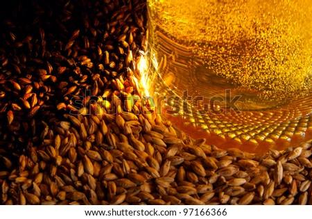 Pale malt, crystal malt, chocolate malt and beer - stock photo