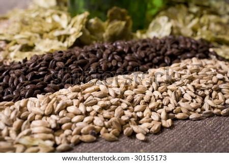 Pale malt, crystal malt, chocolate malt, wheat malt and aromatic hops. - stock photo