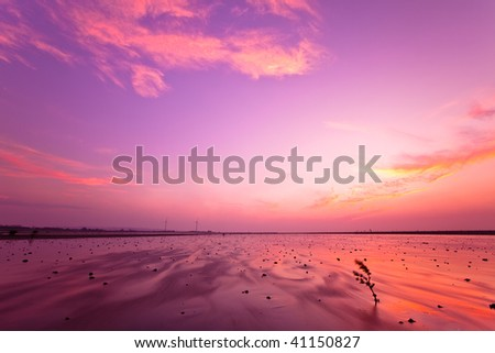 Pale purple sunset - stock photo