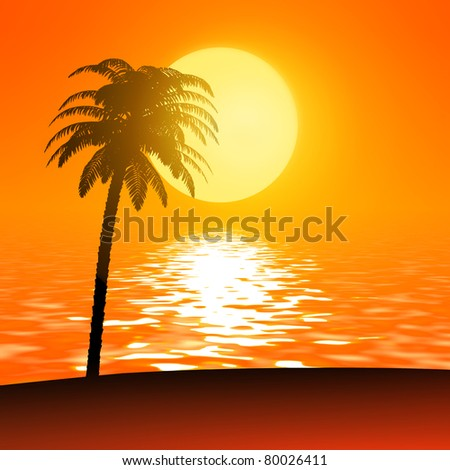 palm against sun / sunset travel background