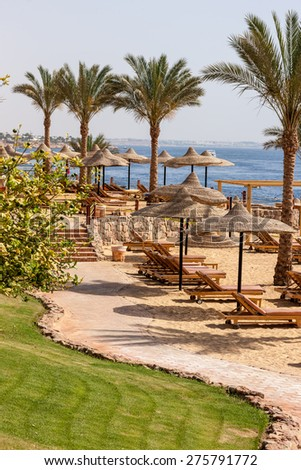 Palm alley on egyptian sand beach, umbrellas and sun loungers and  view at Red Sea. Egypt - stock photo