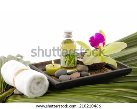 Palm background- Health spa - stock photo