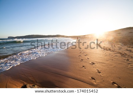 Palm beach in New South Wales, Australia - stock photo